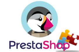 Addons Prestashop, cosa sono e come funzionano?